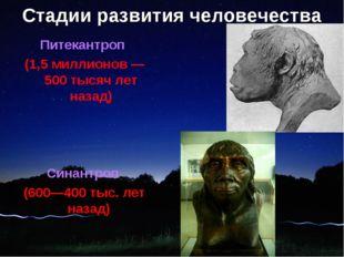 Стадии развития человечества Питекантроп (1,5 миллионов — 500 тысяч лет назад