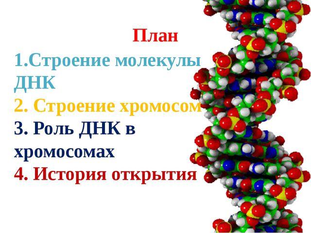 План 1.Строение молекулы ДНК 2. Строение хромосом 3. Роль ДНК в хромосомах 4....