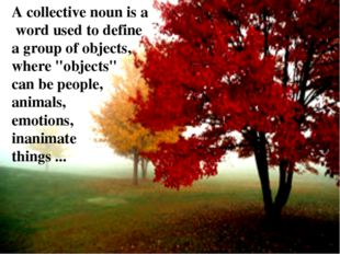 "A collective noun is a word used to define a group of objects, where ""objects"
