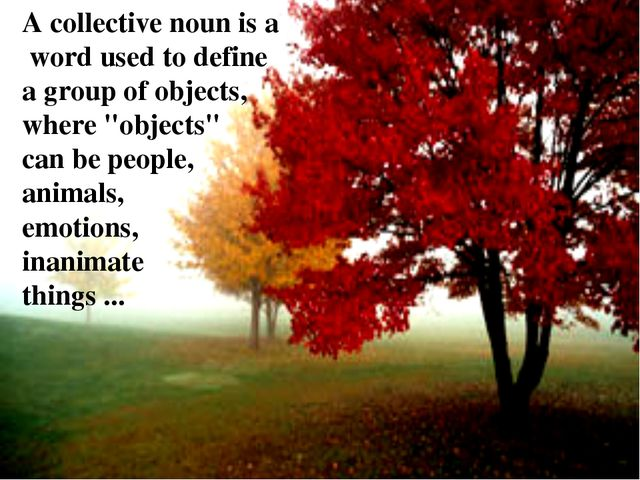 "A collective noun is a word used to define a group of objects, where ""objects..."
