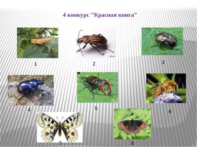 "4 конкурс ""Красная книга"" 1 2 3 4 5 6 7 8"