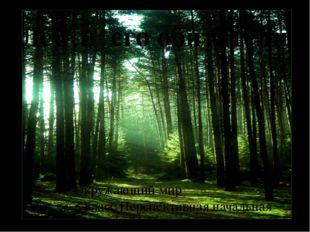 ЛЕС- природное сообщество Лес и его обитатели Окружающий мир 3 класс Перспект