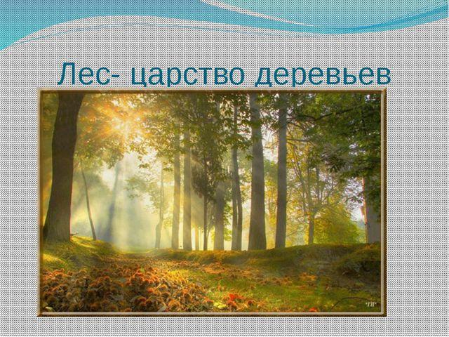 Лес- царство деревьев