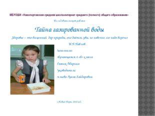МБУОШИ «Новопортовская средняя школа-интернат среднего (полного) общего образ
