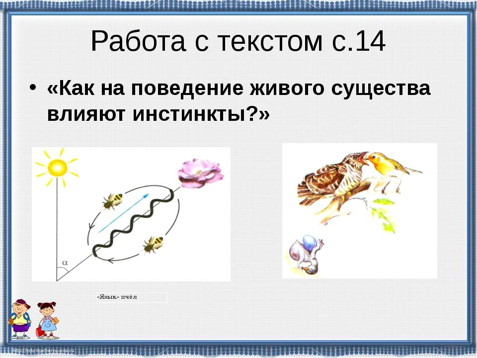 Работа с текстом с.14 «Как на поведение живого существа влияют инстинкты?» «Я...