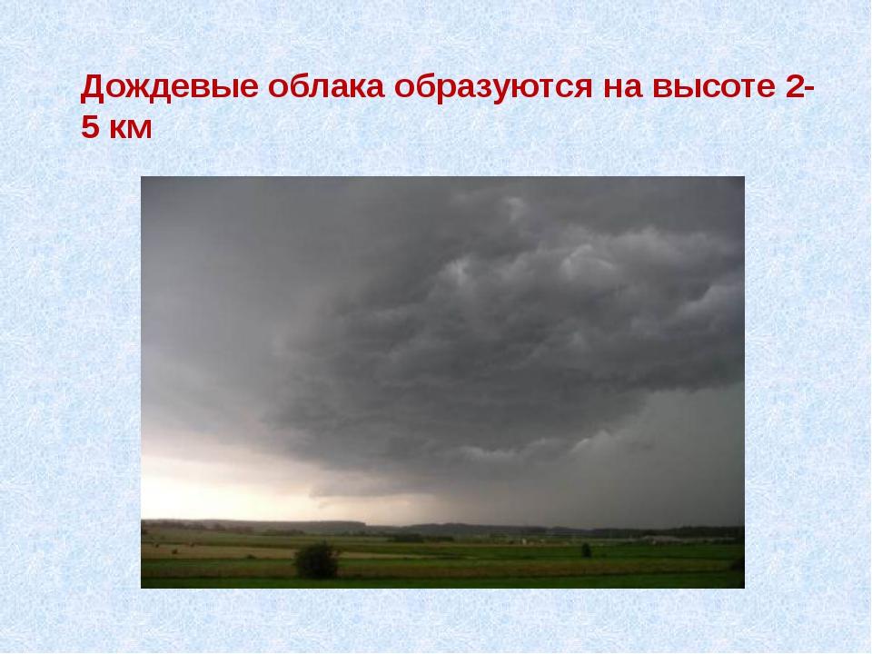 Дождевые облака образуются на высоте 2-5 км