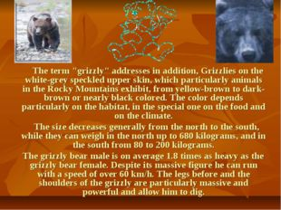 "The term ""grizzly"" addresses in addition, Grizzlies on the white-grey speckl"