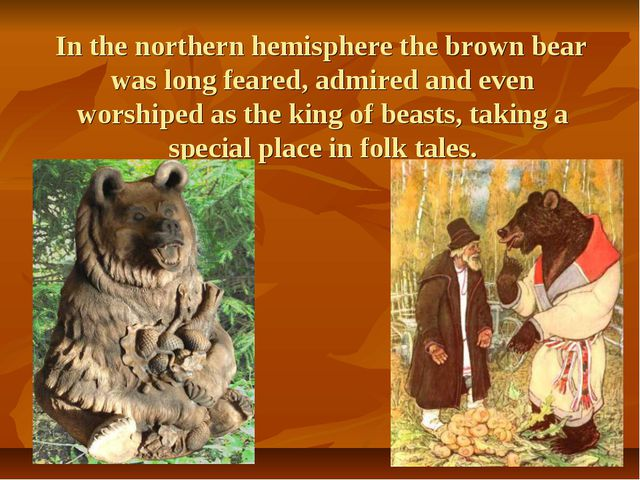 In the northern hemisphere the brown bear was long feared, admired and even...