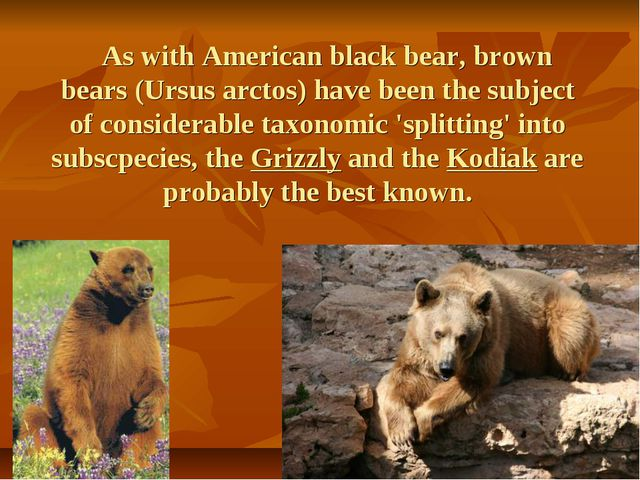 As with American black bear, brown bears (Ursus arctos) have been the subjec...