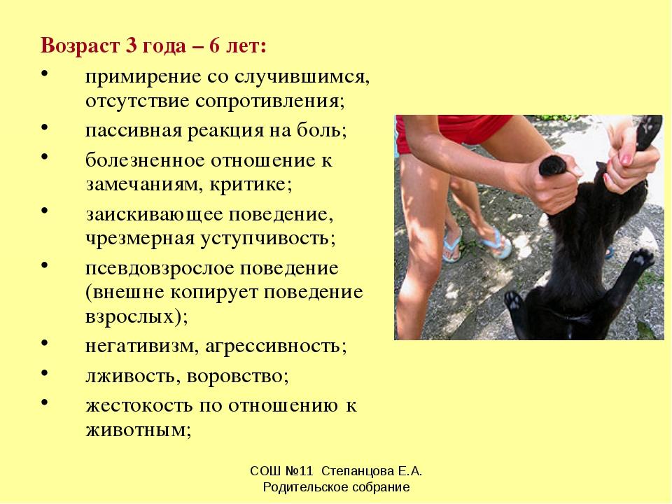 Возраст 3 года – 6 лет: примирение со случившимся, отсутствие сопротивления;...