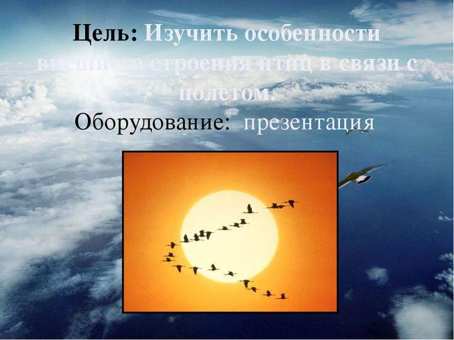Цель: Изучить особенности внешнего строения птиц в связи с полетом. Оборудова...