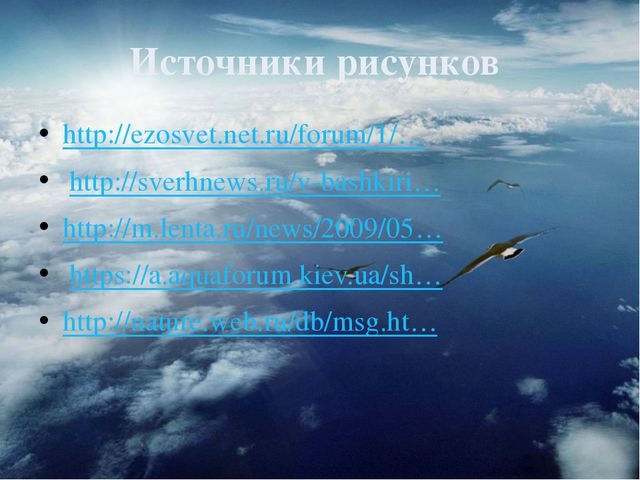 Источники рисунков http://ezosvet.net.ru/forum/1/… http://sverhnews.ru/v-bas...