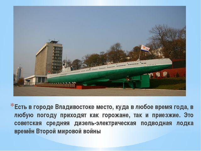 Есть в городе Владивостоке место, куда в любое время года, в любую погоду при...