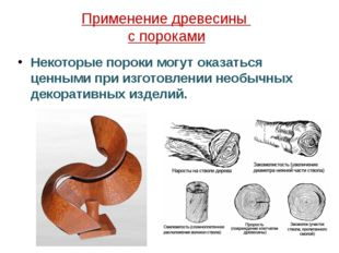 Применение древесины с пороками Некоторые пороки могут оказаться ценными при