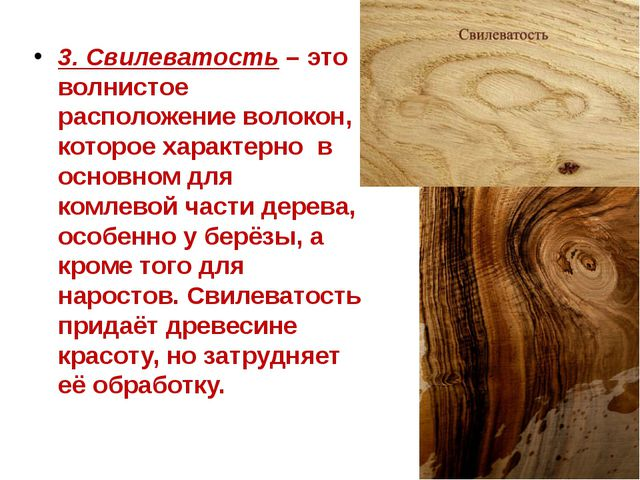 3. Свилеватость – это волнистое расположение волокон, которое характерно в ос...
