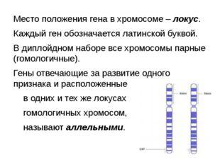 Место положения гена в хромосоме – локус. Каждый ген обозначается латинской б