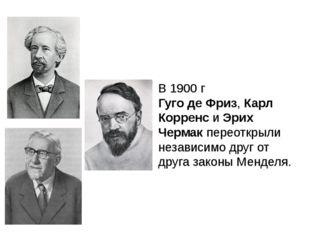 В 1900 г Гуго де Фриз, Карл Корренс и Эрих Чермак переоткрыли независимо друг