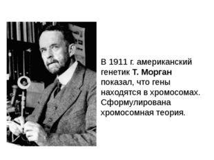 В 1911 г. американский генетик Т. Морган показал, что гены находятся в хромос
