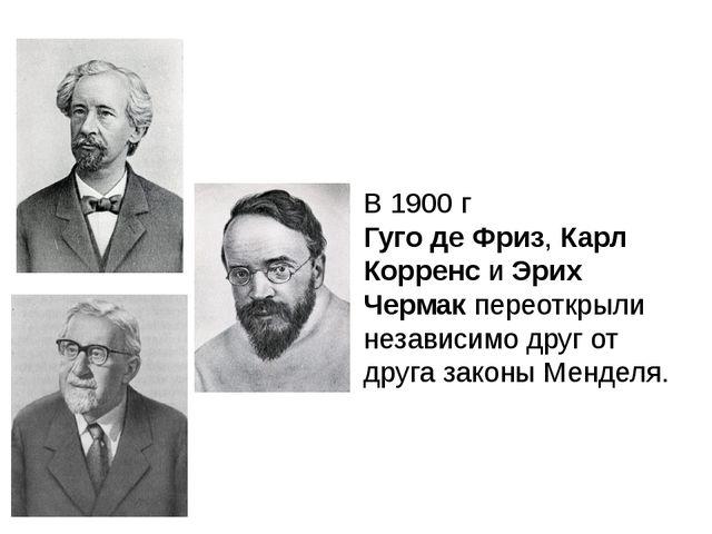 В 1900 г Гуго де Фриз, Карл Корренс и Эрих Чермак переоткрыли независимо друг...