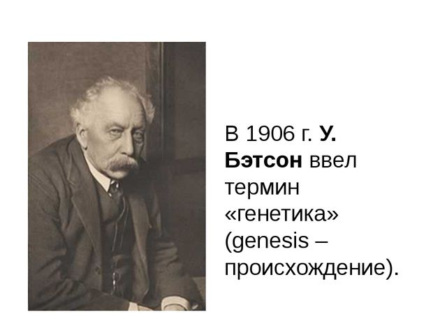 В 1906 г. У. Бэтсон ввел термин «генетика» (genesis – происхождение).