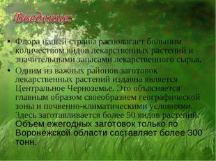 Флора нашей страны располагает большим количеством видов лекарственных растен