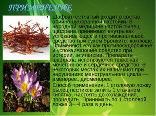 Шафран сетчатый входит в состав опийно-шафранной настойки. В народной медицин