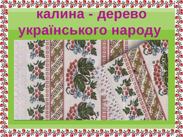 калина - дерево українського народу