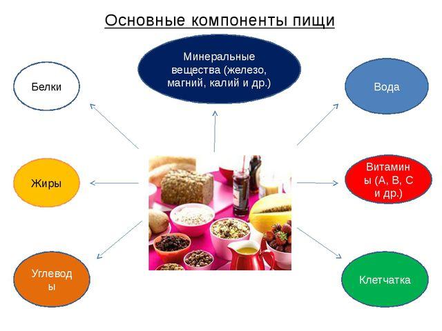 Основные компоненты пищи Белки Витамины (А, B, C и др.) Жиры Углеводы Минерал...