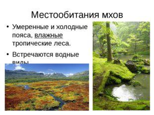 Местообитания мхов Умеренные и холодные пояса, влажные тропические леса. Встр