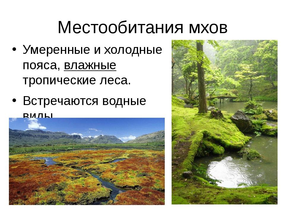 Местообитания мхов Умеренные и холодные пояса, влажные тропические леса. Встр...