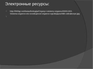 Электронные ресурсы: http://900igr.net/datas/biologija/Organy-i-sistemy-organ