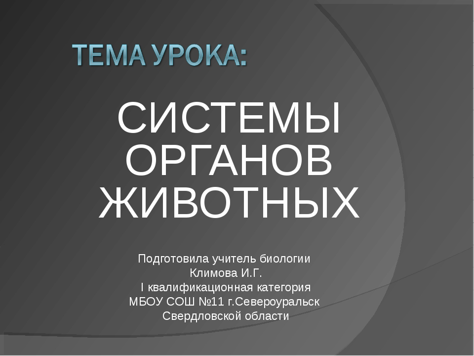 СИСТЕМЫ ОРГАНОВ ЖИВОТНЫХ Подготовила учитель биологии Климова И.Г. I квалифик...