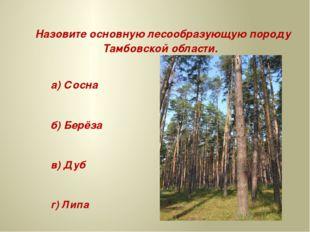 Назовите основную лесообразующую породу Тамбовской области. а) Сосна б) Берё