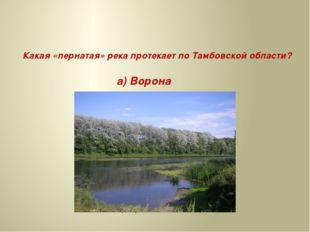 Какая «пернатая» река протекает по Тамбовской области? а) Ворона б) Сорока в
