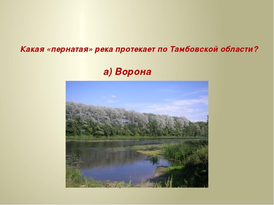 Какая «пернатая» река протекает по Тамбовской области? а) Ворона б) Сорока в...