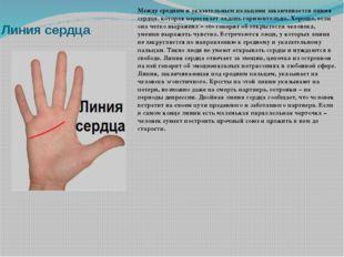 Линия сердца Между средним и указательным пальцами заканчивается линия сердца