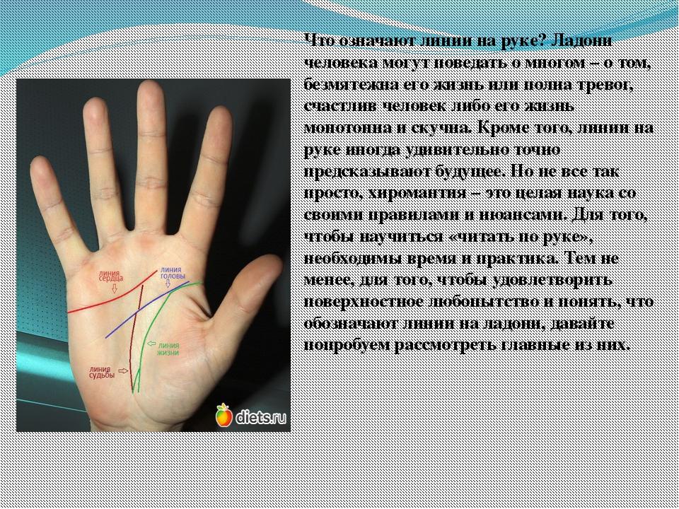 Как посмотреть линию жизни на своей руке