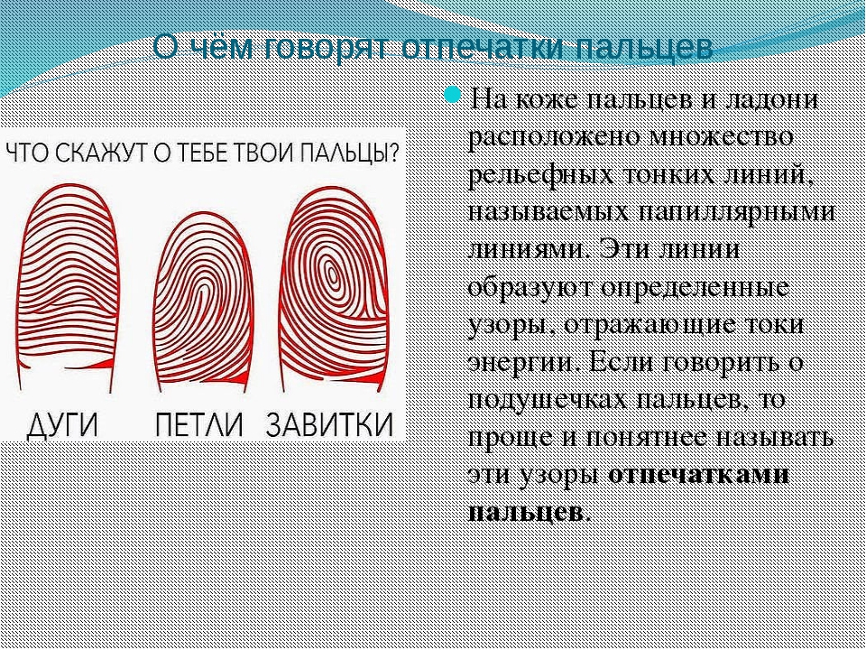 О чём говорят отпечатки пальцев На коже пальцев и ладони расположено множеств...