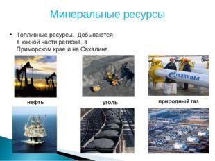 Минеральные ресурсы Топливные ресурсы. Добываются в южной части региона, в Пр