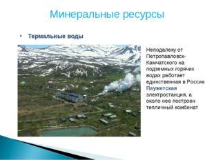Минеральные ресурсы Термальные воды Неподалеку от Петропавловск-Камчатского н