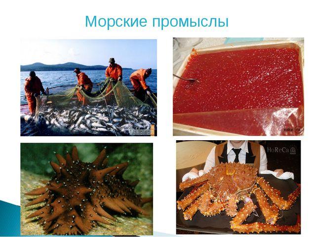 Морские промыслы