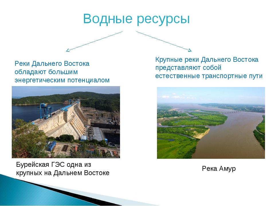 Водные ресурсы Реки Дальнего Востока обладают большим энергетическим потенциа...