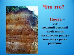 Почва – это верхний рыхлый слой земли, на котором растут или могут расти рас