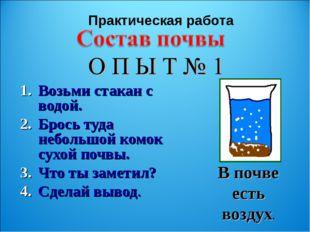 Возьми стакан с водой. Брось туда небольшой комок сухой почвы. Что ты заметил