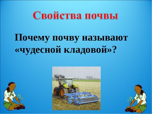 Почему почву называют «чудесной кладовой»?