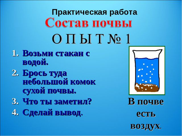 Возьми стакан с водой. Брось туда небольшой комок сухой почвы. Что ты заметил...