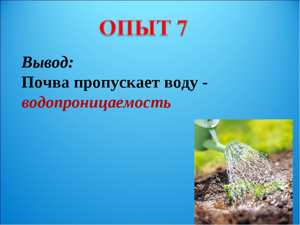 Вывод: Почва пропускает воду - водопроницаемость