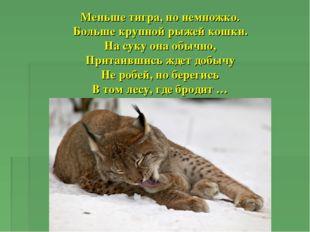 Меньше тигра, но немножко. Больше крупной рыжей кошки. На суку она обычно, Пр