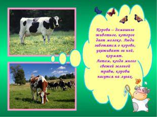 Корова – домашнее животное, которое дает молоко. Люди заботятся о корове, ух