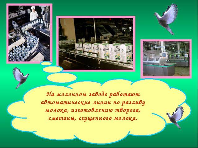 На молочном заводе работают автоматические линии по разливу молока, изготовле...